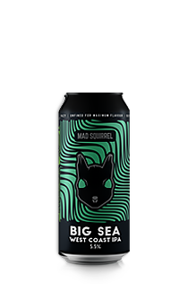 Big Sea - West Coast IPA by Mad Squirrel